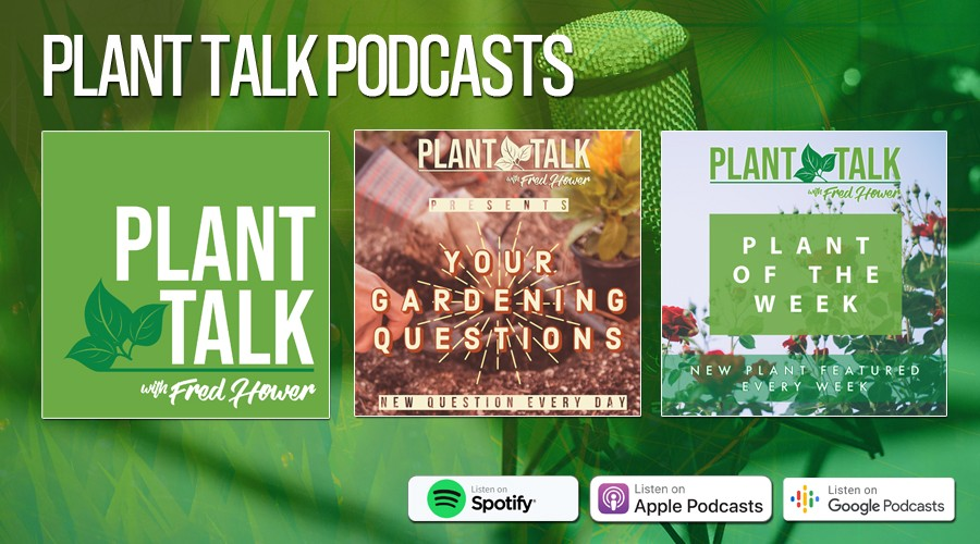 Plant Talk Podcasts