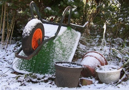 Fred's 9 Tips for Winter Gardening